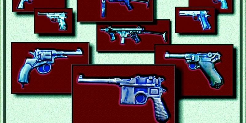 « История стрелкового оружия » (проект)