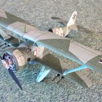 Hs-123  A-1