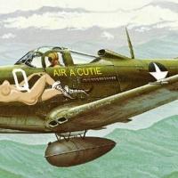 P-39 D