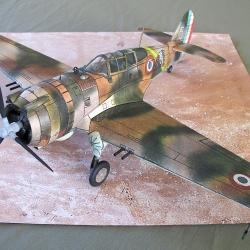 "P-36  ""Hawk"""