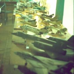 """2005  Международный детский оздоровительный центр """"Дельфин"""""""